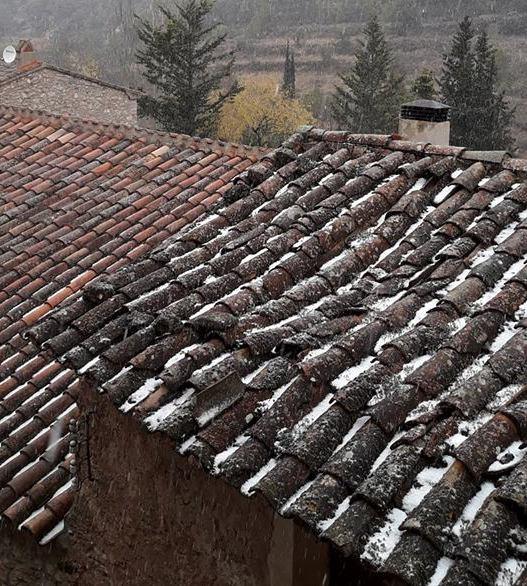 A Farena les volves de neu s'han deixat veure. Foto: Xavier Pagès