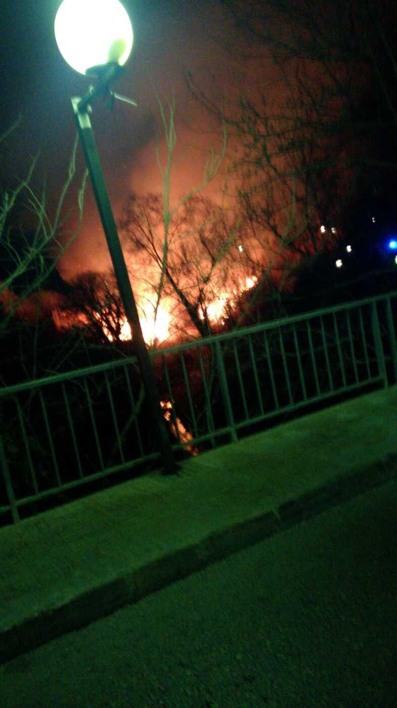 Es cremen 2.500 m2 de canyes al Torrent de la Xamora